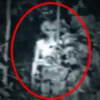 alien capturat